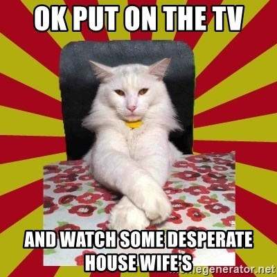 Dictator Cat - OK PUT ON THE TV AND WATCH SOME DESPERATE HOUSE WIFE'S