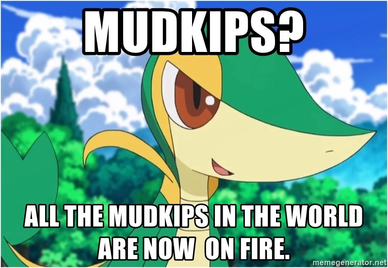 Snivy - Mudkips? All the mudkips in the world are now  on fire.