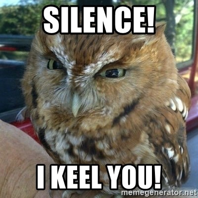 Overly Angry Owl - Silence! i keel you!