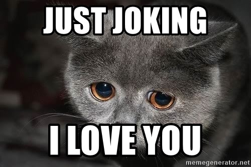 Sadcat - JUST JOKING  I LOVE YOU