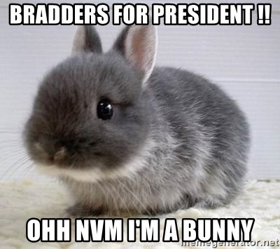 ADHD Bunny - BRADDERS FOR PRESIDENT !! OHH NVM I'M A BUNNY