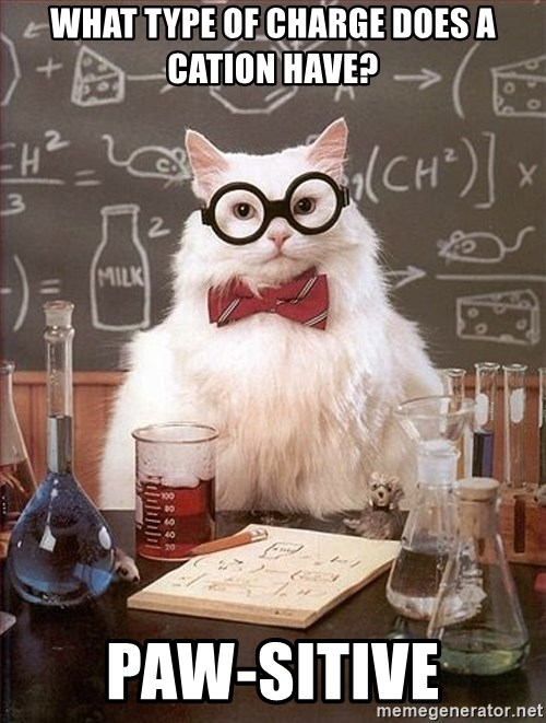 Science Cat - What type of charge does a Cation Have? Paw-sitive