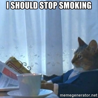 Sophisticated Cat Meme - I should stop smoking