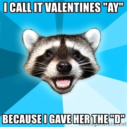 """Lame Pun Coon - i call it valentines """"ay"""" because i gave her the """"d"""""""