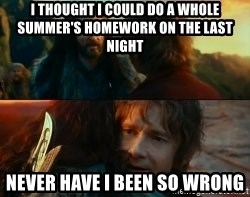 Never Have I Been So Wrong - i thought i could do a whole summer's homework on the last night never have i been so wrong