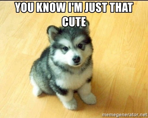 Baby Courage Wolf - You know i'm just that cute