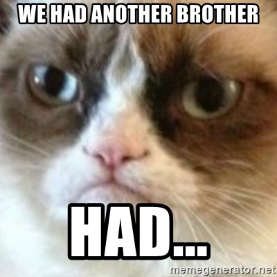 angry cat asshole - we had another brother had...