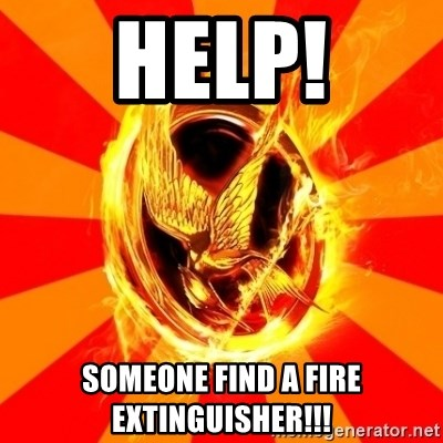 Typical fan of the hunger games - help! Someone find a fire extinguisher!!!