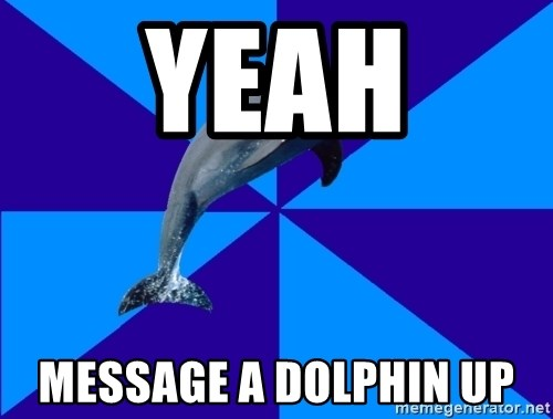 Drama Dolphin - Yeah  message a dolphin up