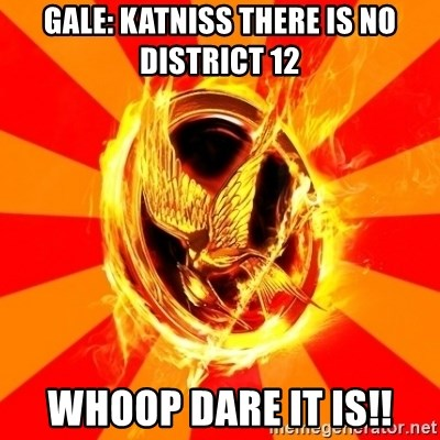 Typical fan of the hunger games - GALE: KATNISS THERE IS NO DISTRICT 12 WHOOP DARE IT IS!!