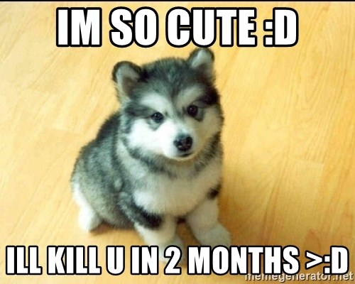Baby Courage Wolf - im so cute :D Ill kill u in 2 months >:D