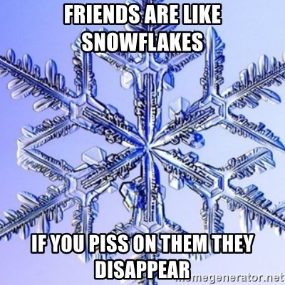 Special Snowflake meme - Friends are like snowflakes if you piss on them they disappear