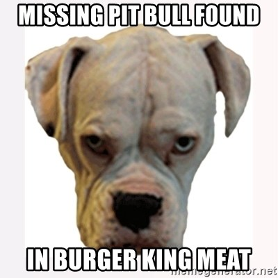 stahp guise - missing pit bull found in burger king meat