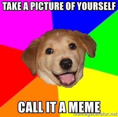 Advice Dog - Take a picture of yourself Call it a meme