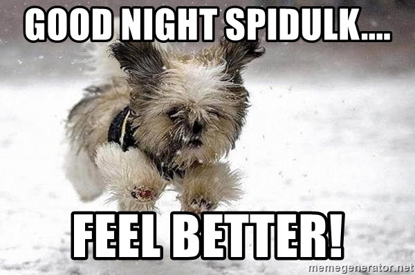 Good Night Spidulk Feel Better Cute Dog Meme Generator