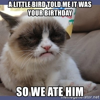 Birthday Grumpy Cat - A little bird told me it was your birthday so we ate him