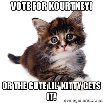 fyeahpussycats - vote for kourtney! or the cute lil' kitty gets it!