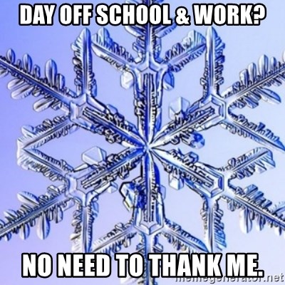 Special Snowflake meme - Day off School & Work? No need to thank me.