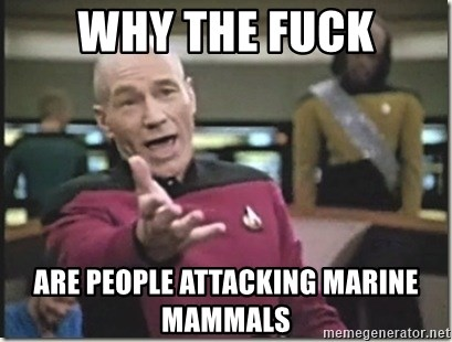 star trek wtf - Why the fuck Are people attacking marine mammals