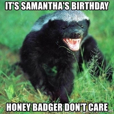 Honey Badger Actual - IT'S SAMANTHA'S BIRTHDAY HONEY BADGER DON'T CARE