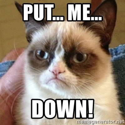 Grumpy Cat  - Put... Me... DOWN!