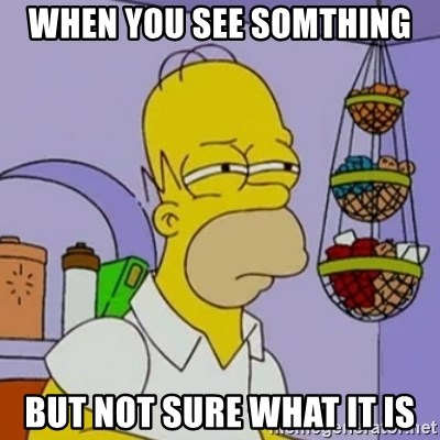 Simpsons' Homer - WHEN YOU SEE SOMTHING BUT NOT SURE WHAT IT IS