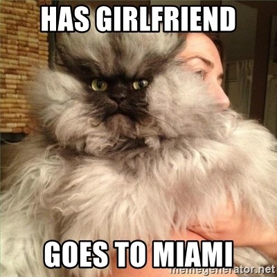 Colonel Meow - Has girlfriend Goes to miami