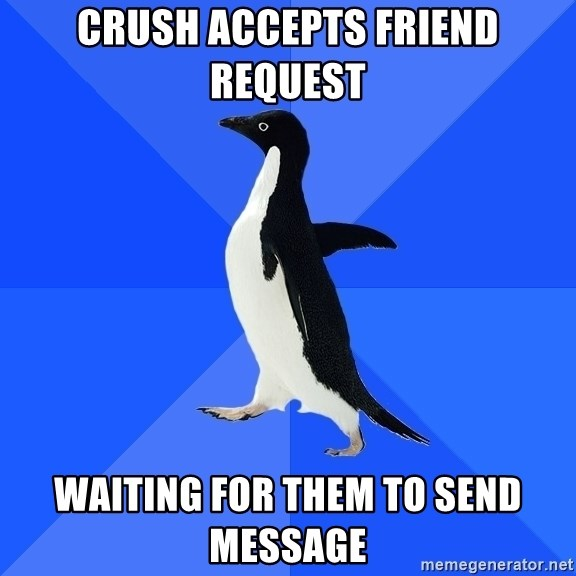 Socially Awkward Penguin - Crush accepts friend request Waiting for them to send messAge