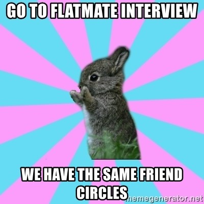 yAy FoR LifE BunNy - go to flatmate interview  we have the same friend circles