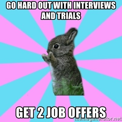 yAy FoR LifE BunNy - go hard out with interviews and trials get 2 job offers