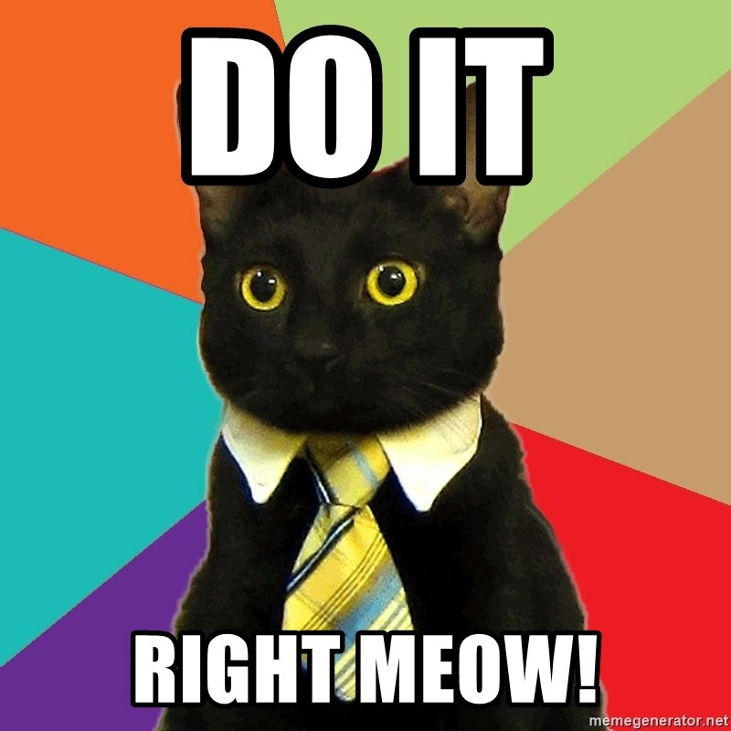 Business Cat - Do it  Right meow!