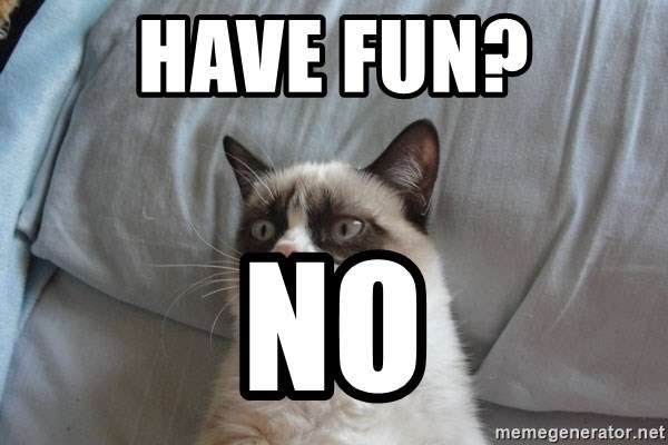 Grumpy cat good - HAVE FUN? NO