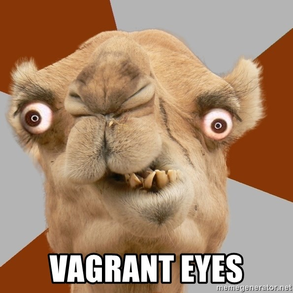 Crazy Camel lol -  VAGRANT EYES