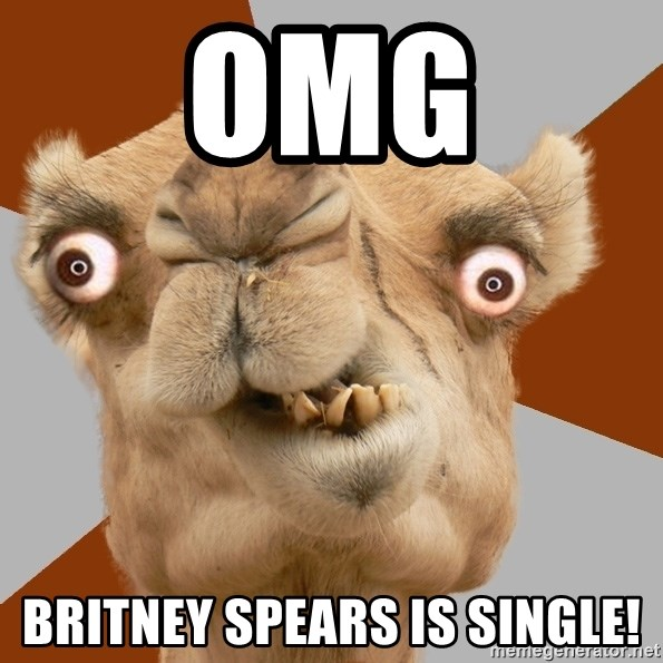 Crazy Camel lol - omg Britney spears is single!