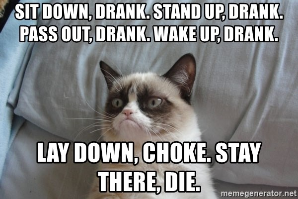 Grumpy cat good - sit down, drank. stand up, drank. pass out, drank. wake up, drank. lay down, choke. stay there, die.