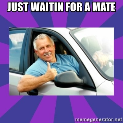 Perfect Driver - JUST WAITIN FOR A MATE