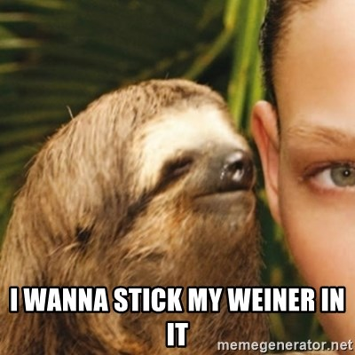 Whispering sloth -  I wanna stick my weiner in it