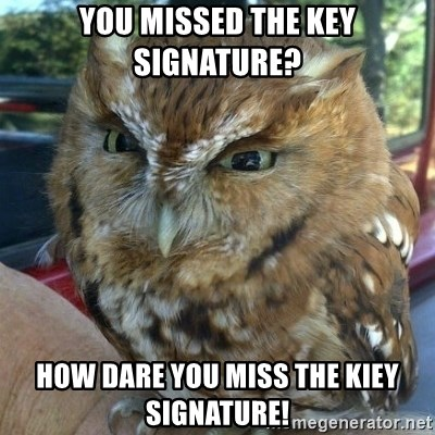 Overly Angry Owl - You Missed the Key Signature? How dare you miss the kiey signature!