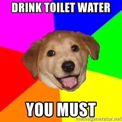 Advice Dog - Drink TOILET water  you must