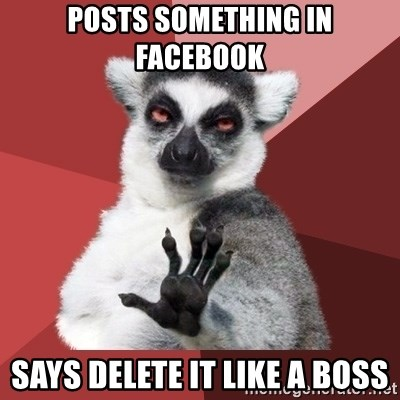 Chill Out Lemur - posts something in facebook says delete it like a boss