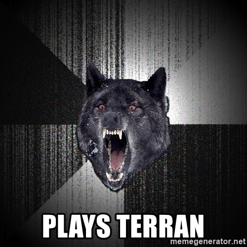 Insanity Wolf -  PLAYS TERRAN