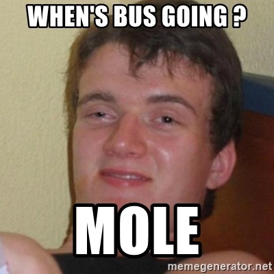 Stoner Stanley - When's bus going ? mole