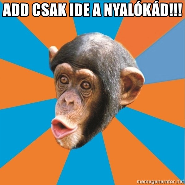 Stupid Monkey - add csak ide a nyalókád!!!