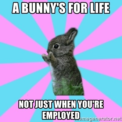 yAy FoR LifE BunNy - A bunny's for life not just when you're employed