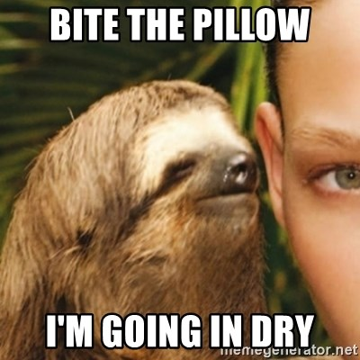 Whispering sloth - Bite the pillow I'm going in dry