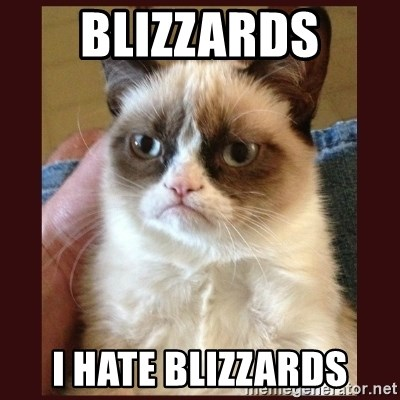 Tard the Grumpy Cat - Blizzards I hate blizzards