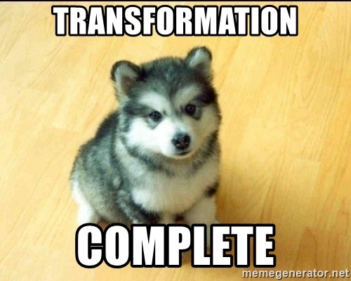 Baby Courage Wolf - TRANSFORMATION COMPLETE