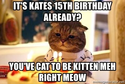 Birthday Cat - It's kates 15th birthday already? you've cat to be kitten meh right meow
