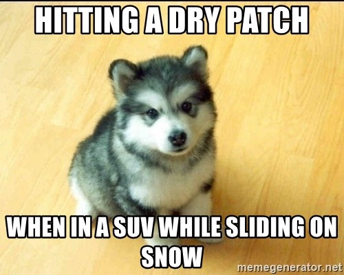 Baby Courage Wolf - HITTING A DRY PATCH WHEN IN A SUV WHILE SLIDING ON SNOW