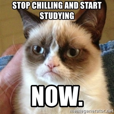 Grumpy Cat  - Stop chilling and start studying now.